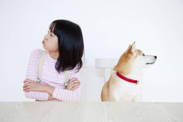 razze di cani meno socievoli