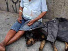 cane randagio senzatetto