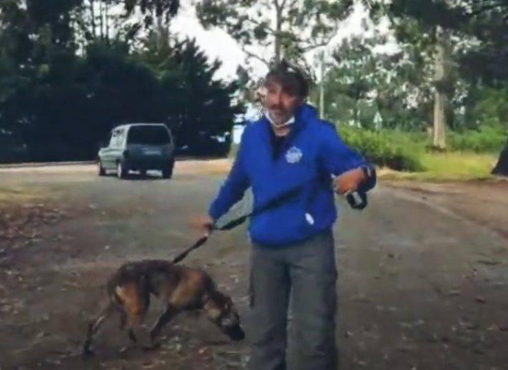 coco cane traumatizzato maltrattato