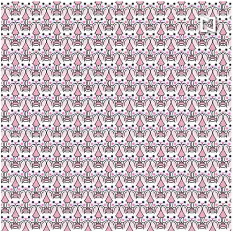 Test visivo elaborato : Trova tutti i conigli con l'acconciatura diversa