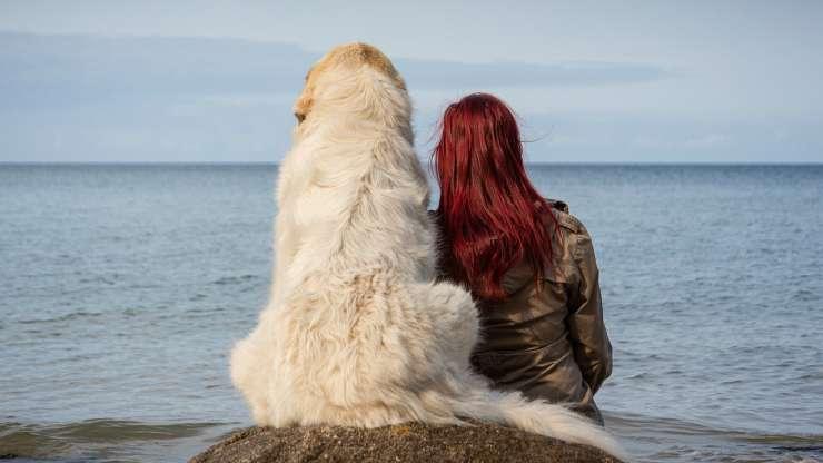 cane con la sua padroncina