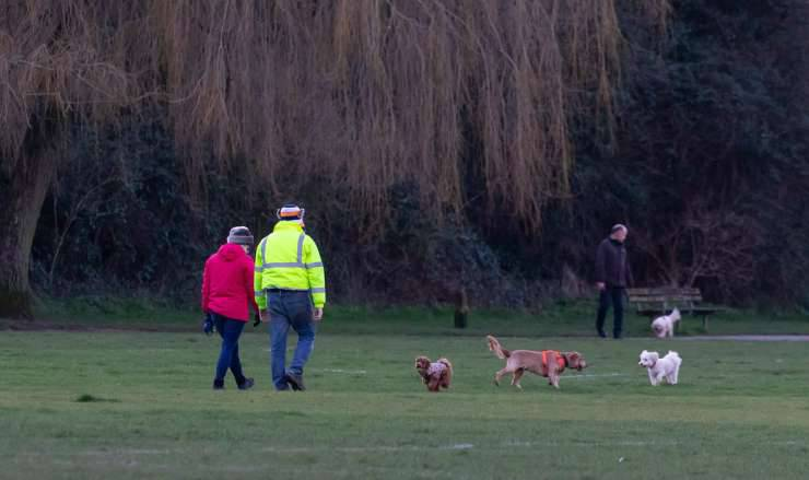 Padroni con i cani al parco (Foto Pixabay)