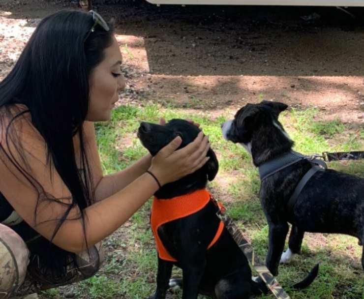 cuccioli abbandonati infezione pelle