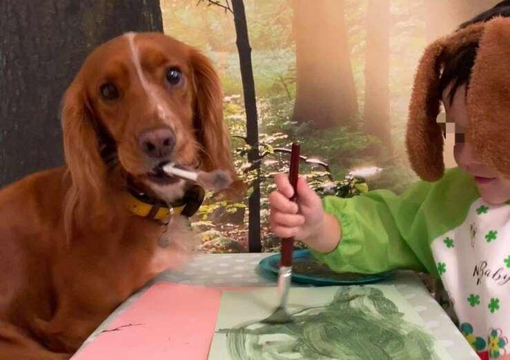 Fren il cane che ha cambiato la vita di un bambino affetto da Autismo