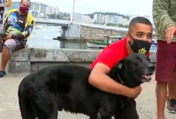 cane scappato casa mara cinque chilometri costa