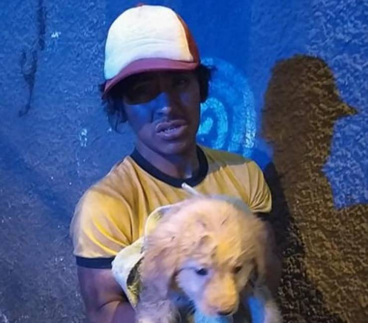 senzatetto donato cibo cane randagio