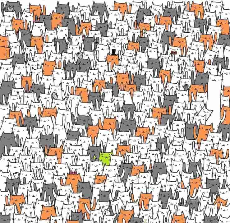 Test Visivo sconvolgente trova la creatura nascosta tra i gatti e topi