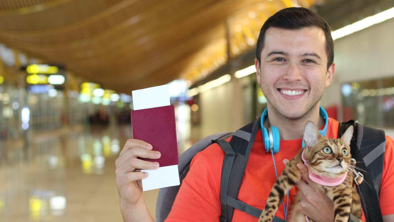 Passaporto gatto