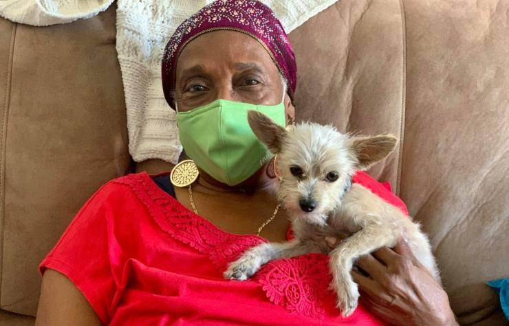 perso cani soffre adotta animali