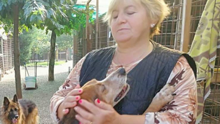 Rifugio Cani Malati Anziani