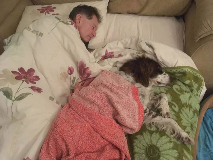 padrone dorme notte cucciolo divano