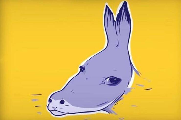 illusione ottica asino o foca ?