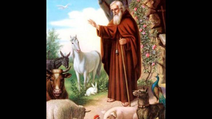 sant antonio abate santo protettore animali domestici