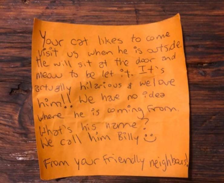 gatto postino amicizia proprietari vicini