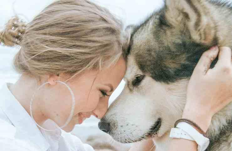 cane aumenta nostra autostima