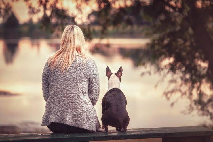 cani cose in comune con umani