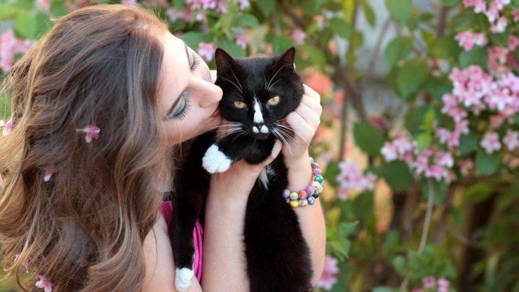perchè gatti ci amano