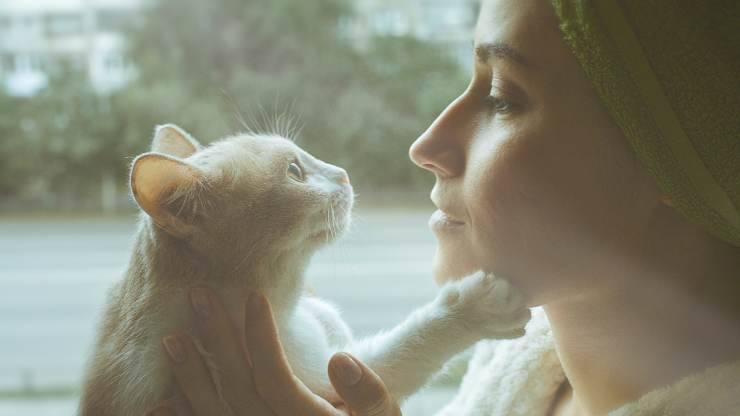 i gatti ci capiscono quando parliamo