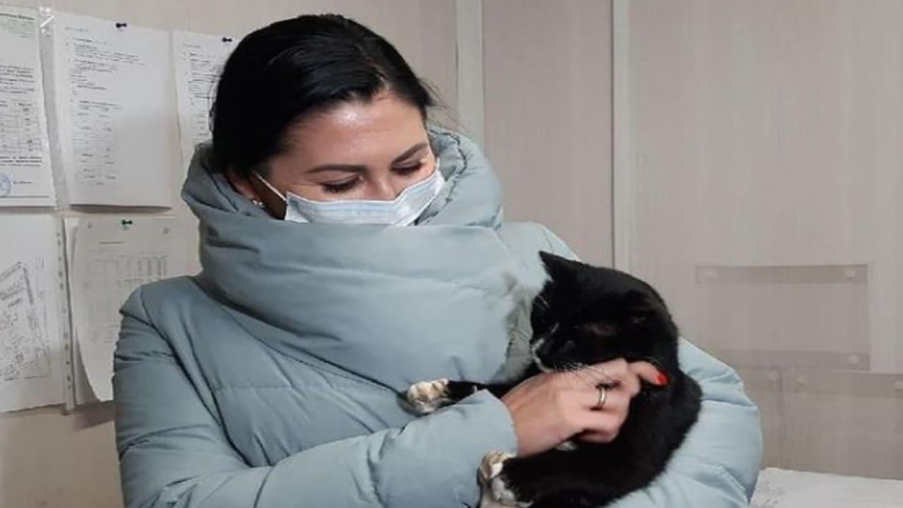 Gatto salvato dal tritarifiuti diventa viceministro dell'ambiente