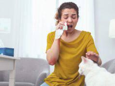 razze di gatti anallergici