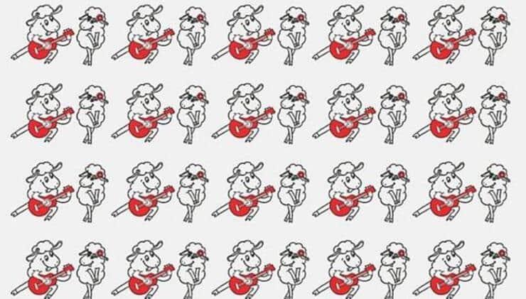 Test delle pecorelle diverse