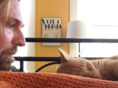 Il padrone e il gatto (foto video)