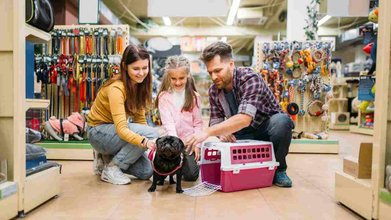 Quali documenti deve consegnarci il venditore del cane?