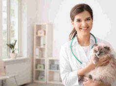 Il libretto sanitario del gatto