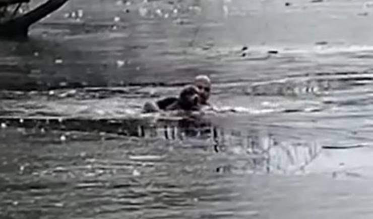 Cane Lago Padrone Londra Video
