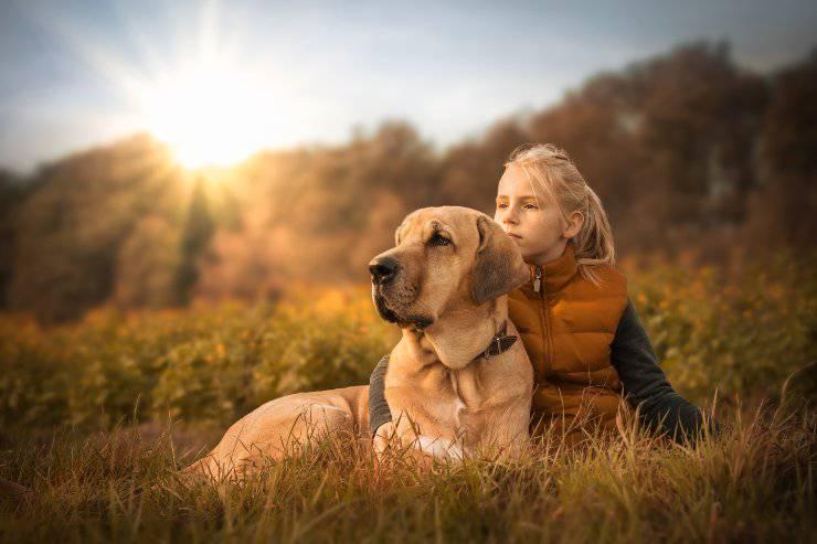 cane difende bambini