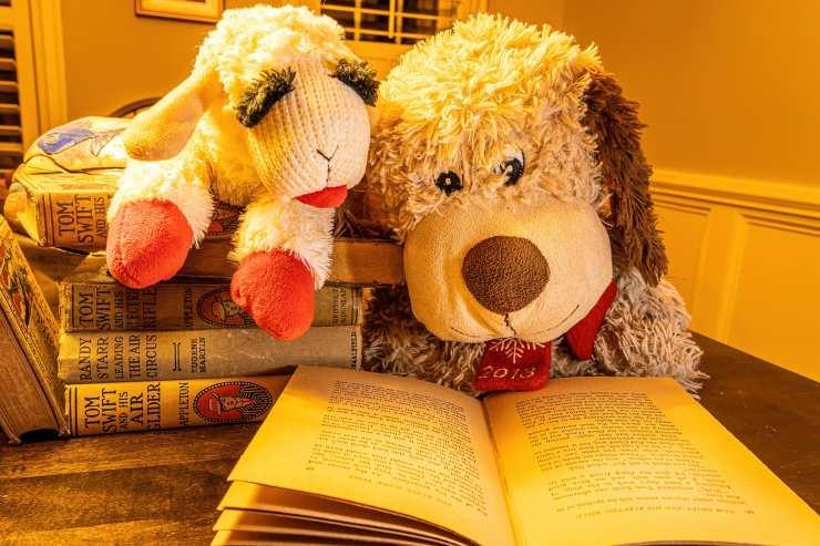 Peluche e libro