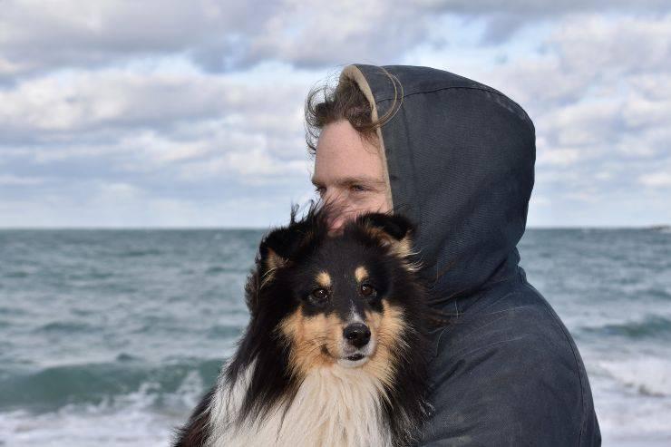 Il cane difende il padrone