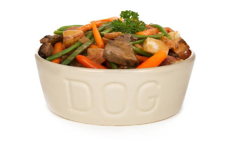 haricots verts pour le chien