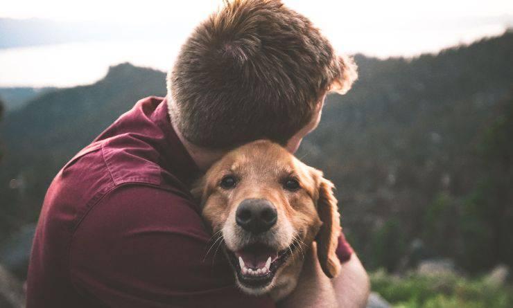 ragazzo abbraccia un cane