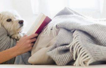 Studiare con un cane riduce lo stress