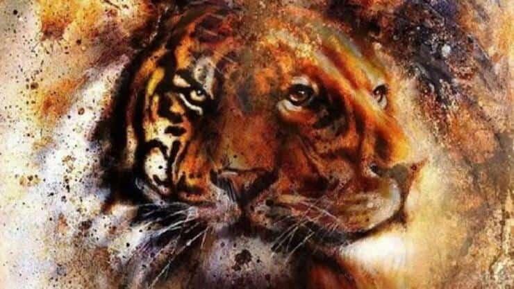 Test tigre o leone?