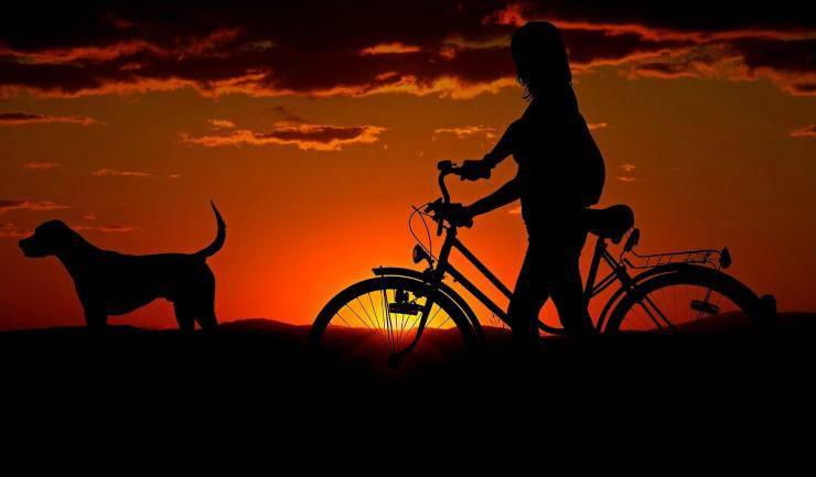 Cane e padrona insieme (Foto Pixabay)