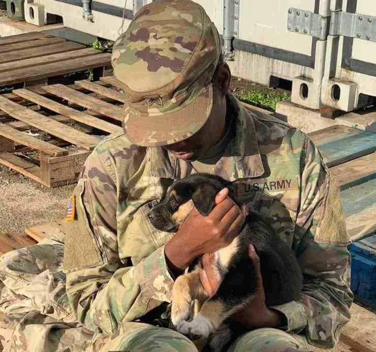 sergente esercito riunisce cucciolo cane