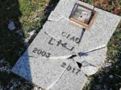 lapidi distrutte cimitero animali