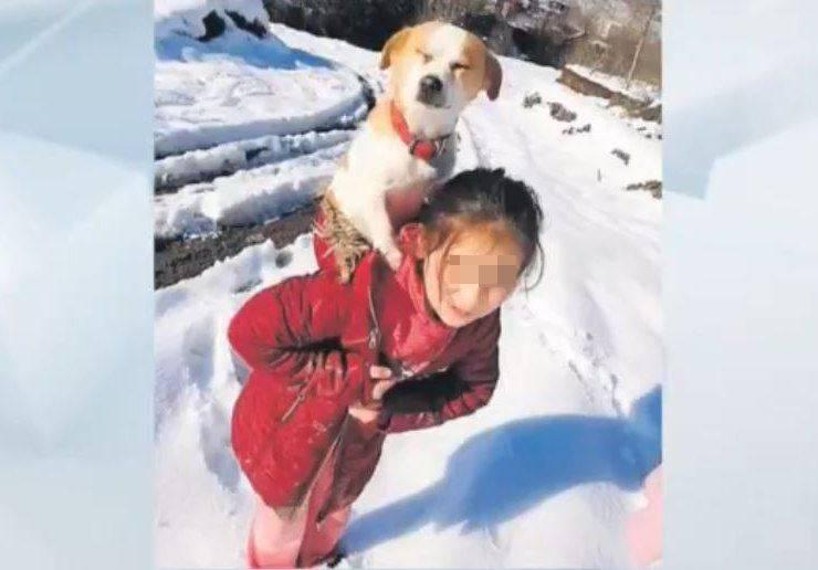bambina cane schiena neve
