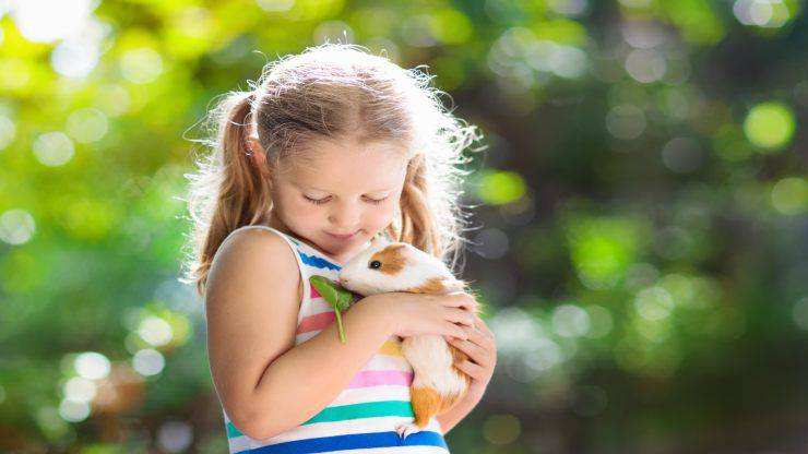 Animali preferiti dai bambini