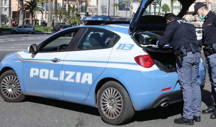 Cuccioli Pastore Tedesco Ritrovati Polizia