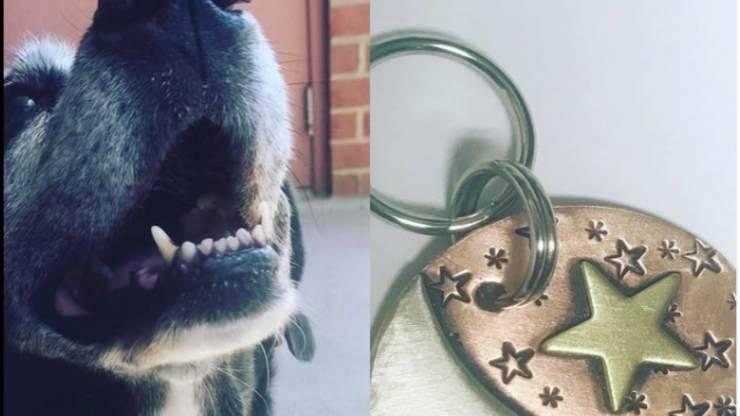 Il ciondolo in ricordo del cane (Foto Instagram)