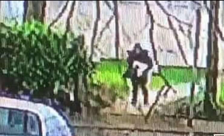 Il rapimento del cane (Screen Video )