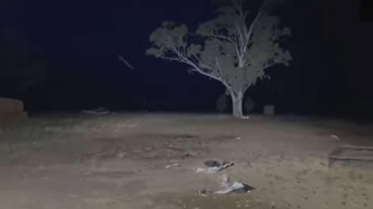 Inondazioni Australia Fuga Animali Video