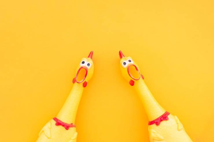 animali di colore giallo