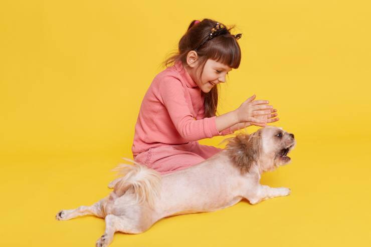 bambina e cane