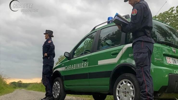 Carabinieri Reggio Emilia (Foto carabinieri forestale)
