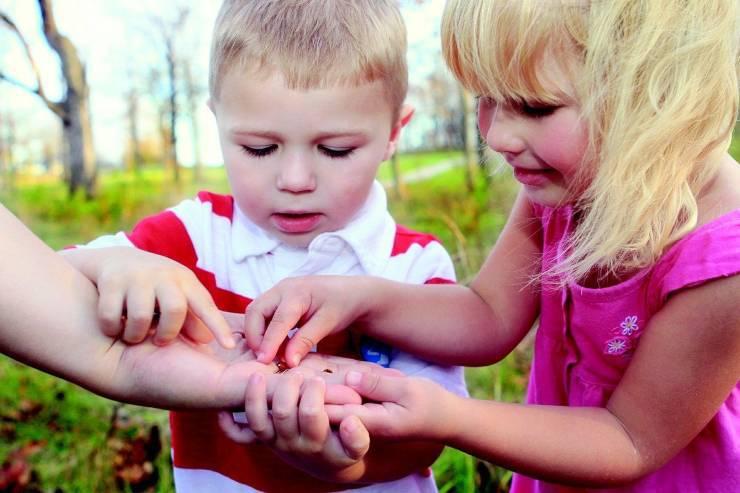 Bambini toccano insetto
