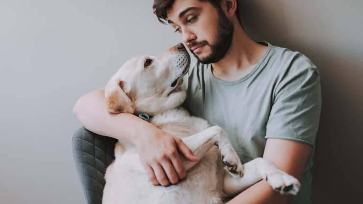 cose che fanno male al cane